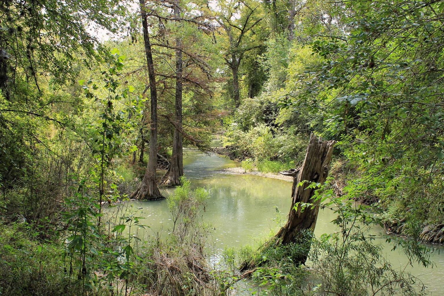Friends Of San Antonio Natural Areas